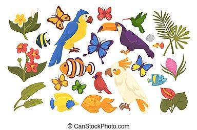 conjunto, de, exótico, flora, y, fauna, en, caricatura,...