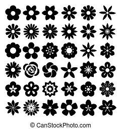 conjunto, de, flor, icons.