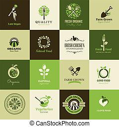 conjunto, de, iconos, para, alimento orgánico