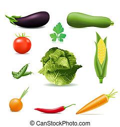 conjunto, de, iconos, vegetales