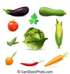 conjunto, de, iconos, vegetales, ilustración