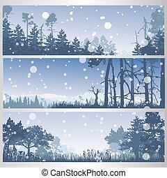 conjunto, de, invierno, bosque, banderas
