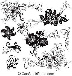 conjunto, de, negro, diseño floral, elementos