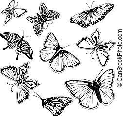 conjunto, de, negro y blanco, mariposas