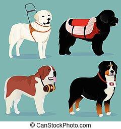 conjunto, de, perros, rescatadores, y, ayudantes