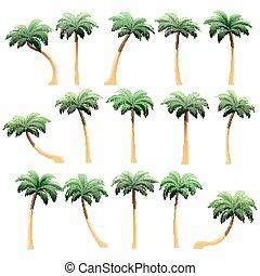 conjunto, de, realista, árboles, con, sombra, aislado, blanco, plano de fondo, .