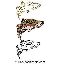 conjunto, de, saltar, salmón