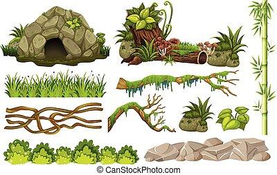 conjunto, de, selva, objetos