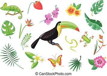 conjunto, de, tropical, verano, elementos, flores, tucán, palma sale, rana, serpiente, camaleón, vector, ilustración, en, un, fondo blanco