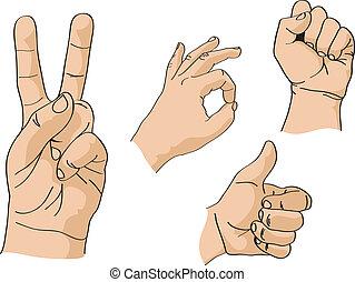 conjunto, de, vector, manos