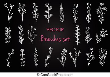 conjunto, de, vector, vendimia, floral, elements.,...