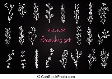 conjunto, de, vector, vendimia, floral, elements.,...