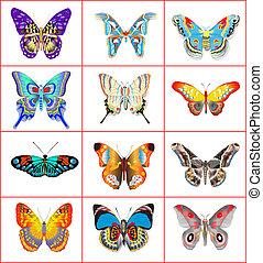conjunto, de, verano, mariposas, en, un, fondo blanco