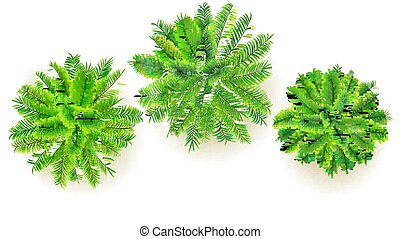 conjunto, de, verde, árboles de palma, vector, 3d, ilustración, aislado, blanco, fondo., punta la vista, en, ramas, de, coco, árboles., exótico, selva, árboles, para, su, diseño, proyecto