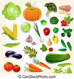 conjunto, de, verduras frescas, para, su, diseño