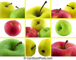 conjunto, fotos, de, apples.