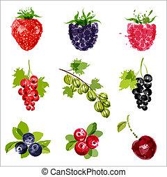 conjunto, fruta