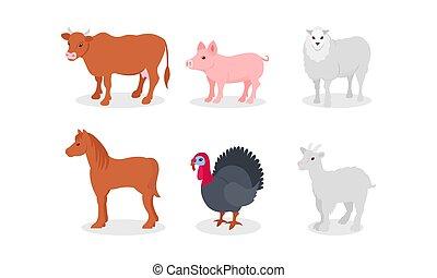 conjunto, ganado, aves, plano de fondo, otro, blanco, animales, granja, vector, ilustración, aislado