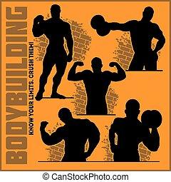 conjunto, gimnasio, -, siluetas, vector, bodybuilders, icono