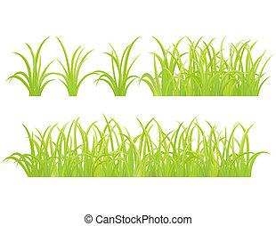 conjunto, hierba verde, elemento