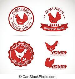 conjunto, huevos, etiqueta, vector, plano de fondo, pollo, ...