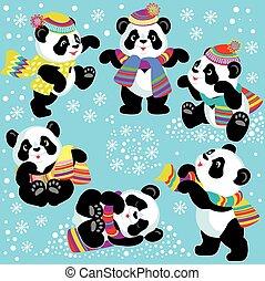 conjunto, invierno, panda