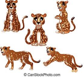 conjunto, leopardo, caricatura, colección