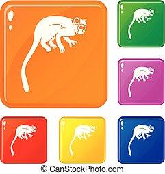 conjunto, mono, iconos, color, mono tití, vector
