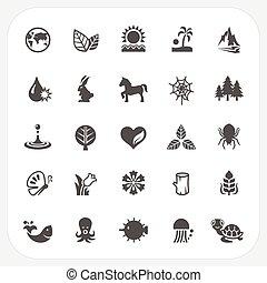 conjunto, naturaleza, iconos