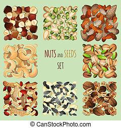 conjunto, nueces, semillas