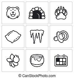 conjunto, oso, icono