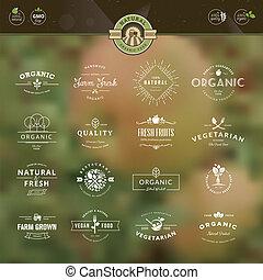 conjunto, para, alimento orgánico, y, bebida