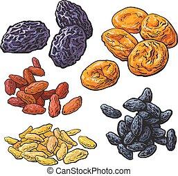 conjunto, pasas, -, albaricoques, pasas, secado, fruits