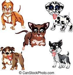 conjunto, perro, colección, caricatura