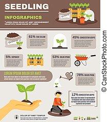 conjunto, planta de semillero, infographics