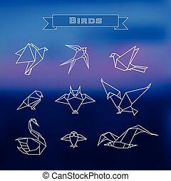 conjunto, polygonal, aves