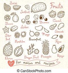 conjunto, product., recetas, fruta, diseño, dibujos, menús,...