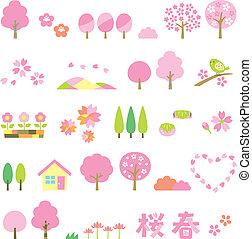conjunto, sakura, árboles