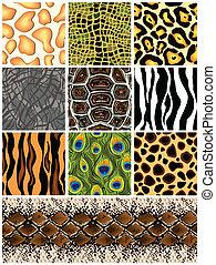 conjunto, seamless, patrones, animals., vector