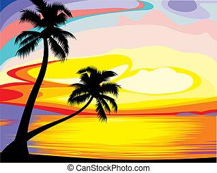 conjunto, sol, isla