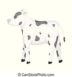 conjunto, stock., vaca, novilla, objeto, aislado, vector, ...