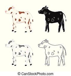 conjunto, stock., vaca, novilla, símbolo., vector, diseño, ...