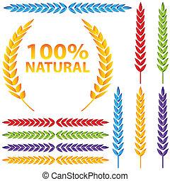 conjunto, trigo, colorido, icono
