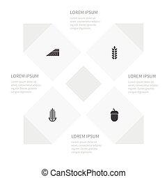 conjunto, trigo, roble, maíz, área, dacha, objects., incluye...