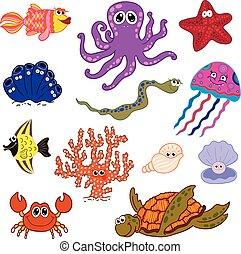 conjunto, underwater., océano, fauna, life., marina