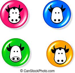 conjunto, vaca, icono