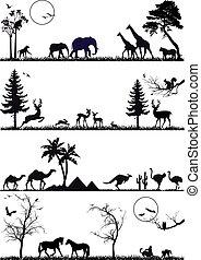 conjunto, vector, animal, plano de fondo