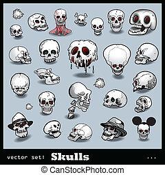 conjunto, vector, cráneos