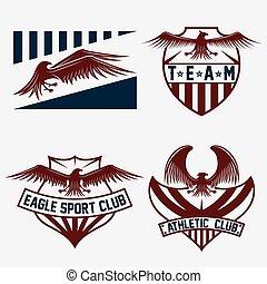 conjunto, vector, diseño, plantilla, equipo, águilas, deporte, crestas