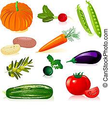 conjunto, vegetales